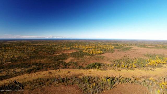 C29 Alaskan Wildwood Ranch(R), Anchor Point, AK 99556 (MLS #19-464) :: Alaska Realty Experts