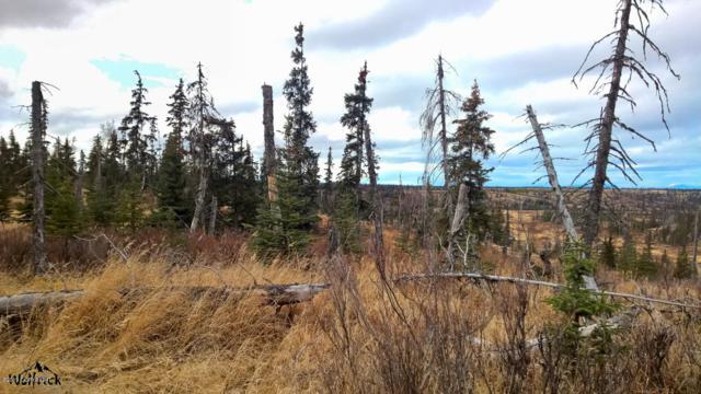 D1 Alaskan Wildwood Ranch(R), Anchor Point, AK 99556 (MLS #19-473) :: Alaska Realty Experts