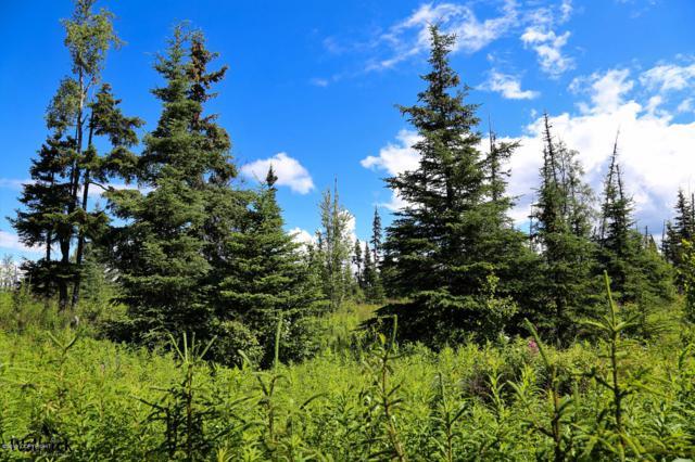 D25 Alaskan Wildwood Ranch(R), Anchor Point, AK 99556 (MLS #19-478) :: The Huntley Owen Team
