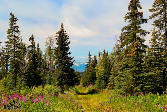 D29 Alaskan Wildwood Ranch(R), Anchor Point, AK 99556 (MLS #19-482) :: The Huntley Owen Team