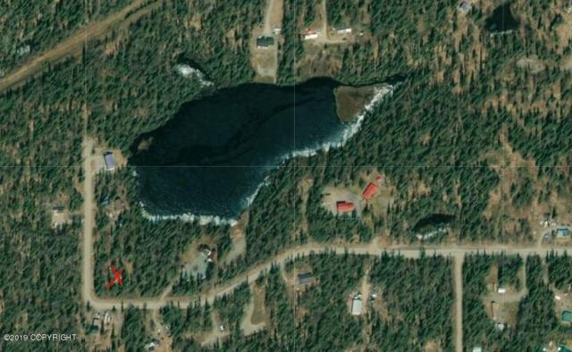 48850 Boondocker Street, Nikiski/North Kenai, AK 99611 (MLS #19-4842) :: RMG Real Estate Network | Keller Williams Realty Alaska Group