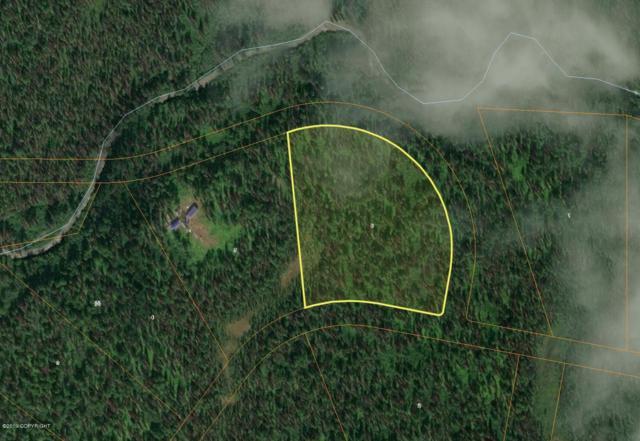 82-1 No Road South Bald Mountain, Talkeetna, AK 99676 (MLS #19-4869) :: RMG Real Estate Network   Keller Williams Realty Alaska Group