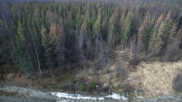 3016 N Gaviidae Drive, Wasilla, AK 99623 (MLS #19-5032) :: RMG Real Estate Network | Keller Williams Realty Alaska Group