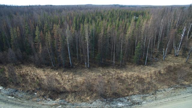3118 N Gaviidae Drive, Wasilla, AK 99623 (MLS #19-5034) :: RMG Real Estate Network | Keller Williams Realty Alaska Group