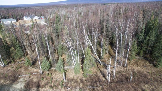 3197 N Gaviidae Drive, Wasilla, AK 99623 (MLS #19-5035) :: RMG Real Estate Network | Keller Williams Realty Alaska Group