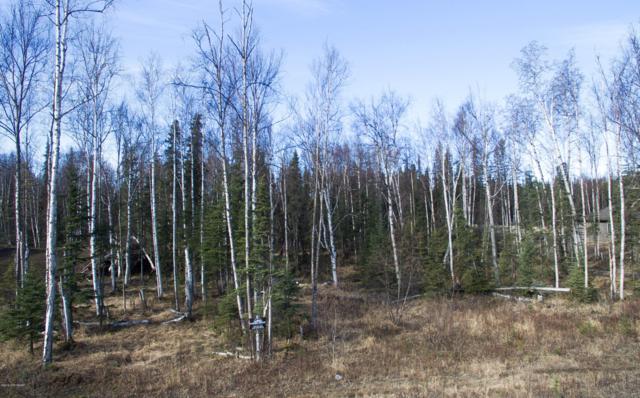2784 N Kalmbach Lake Drive, Wasilla, AK 99623 (MLS #19-5036) :: RMG Real Estate Network | Keller Williams Realty Alaska Group
