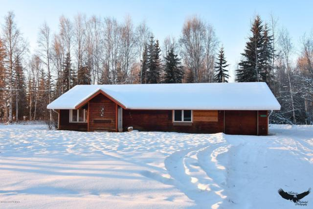 2891 Horseshoe Way, North Pole, AK 99705 (MLS #19-509) :: Core Real Estate Group