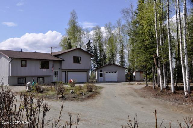 15360 Rocky Lake Drive, Big Lake, AK 99652 (MLS #19-5113) :: RMG Real Estate Network   Keller Williams Realty Alaska Group
