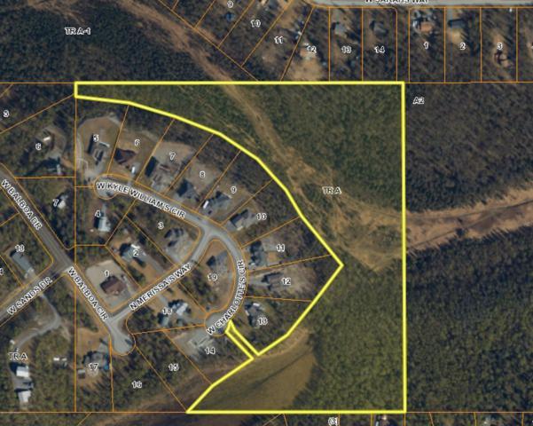 Tr A Charlottes Street, Wasilla, AK 99654 (MLS #19-5154) :: RMG Real Estate Network | Keller Williams Realty Alaska Group