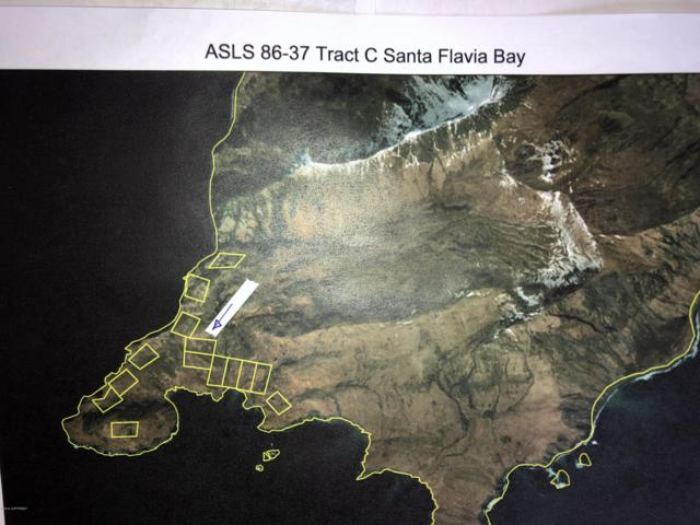 ASLS 86-37 Tract C Santa Flavia Bay, Remote, AK 99615 (MLS #19-5193) :: Roy Briley Real Estate Group