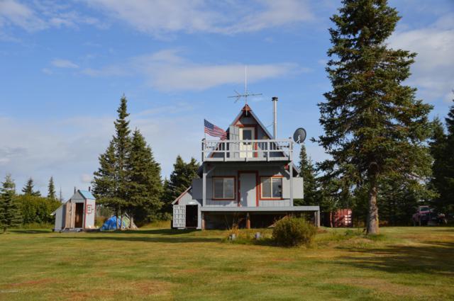 52994 Straight In Trail, Ninilchik, AK 99639 (MLS #19-52) :: Alaska Realty Experts