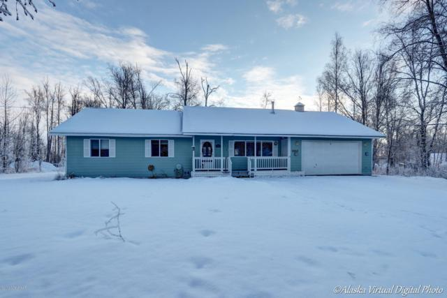 3850 W Saindon Court, Wasilla, AK 99623 (MLS #19-520) :: Alaska Realty Experts