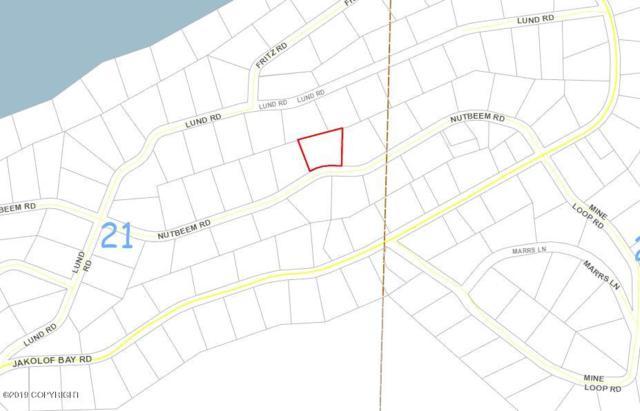 L8 B11 Nutbeem Road, Seldovia, AK 99663 (MLS #19-5216) :: Roy Briley Real Estate Group