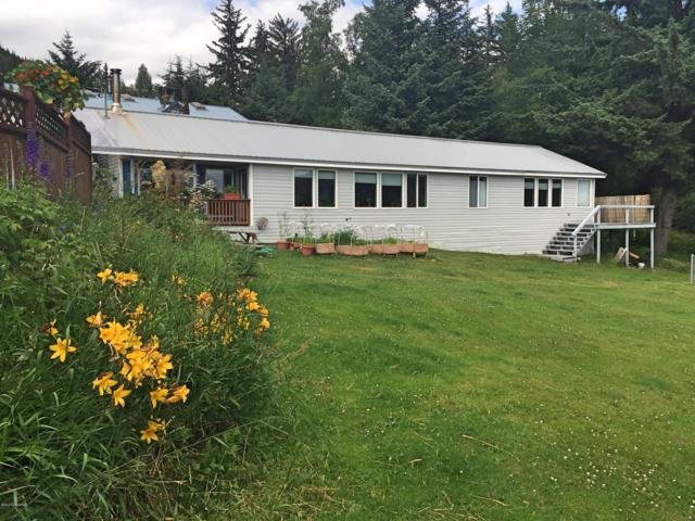 440 Young Road, Haines, AK 99827 (MLS #19-5321) :: Roy Briley Real Estate Group