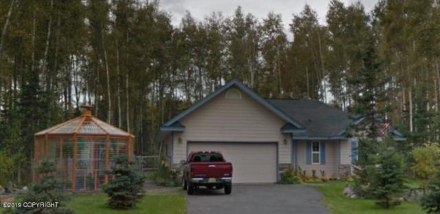 6630 S Settlers Bay Drive, Wasilla, AK 99623 (MLS #19-5325) :: Roy Briley Real Estate Group