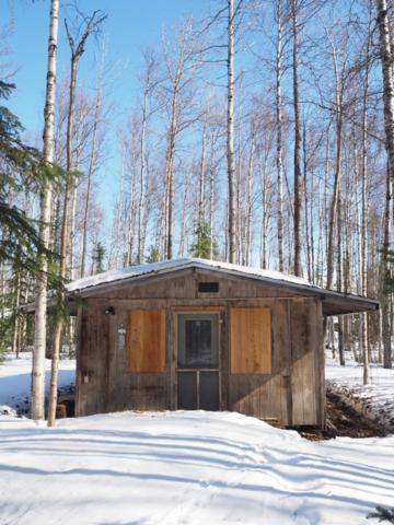 12745 N Pettis Drive, Willow, AK 99688 (MLS #19-5356) :: RMG Real Estate Network | Keller Williams Realty Alaska Group