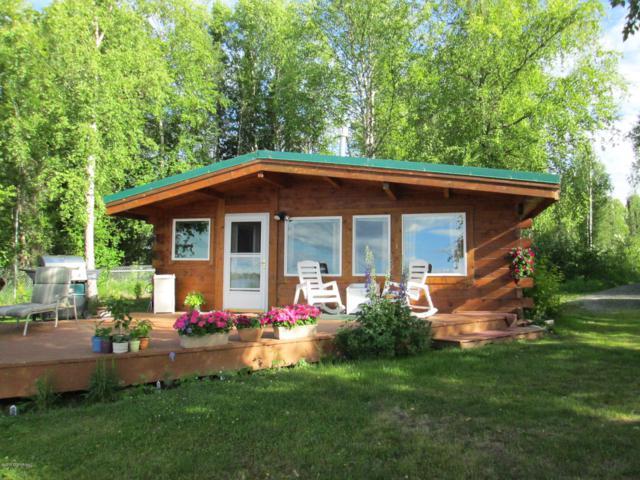 3172 S Kayak Circle, Big Lake, AK 99652 (MLS #19-5418) :: RMG Real Estate Network | Keller Williams Realty Alaska Group