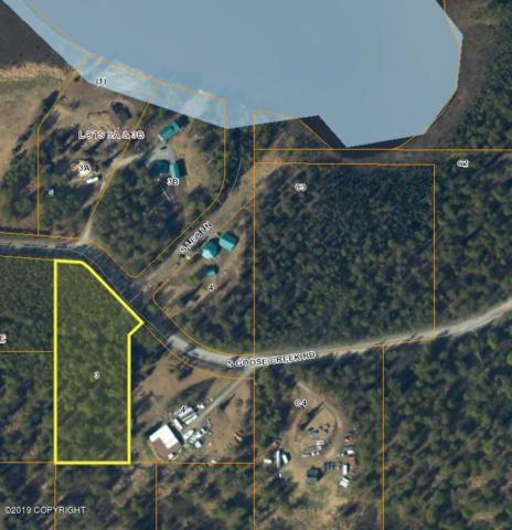 12769 Goose Creek Road, Wasilla, AK 99654 (MLS #19-5421) :: Core Real Estate Group