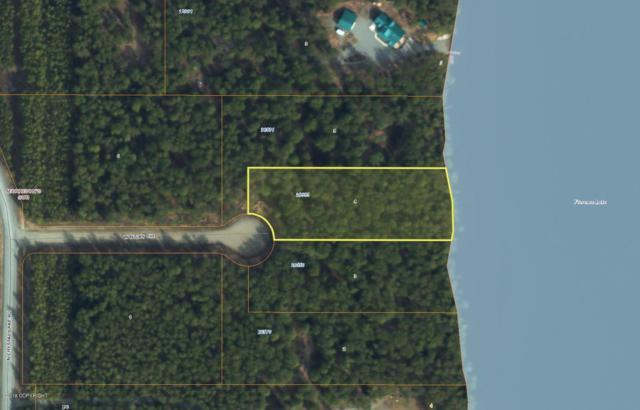 26555 W Nicky Circle, Willow, AK 99688 (MLS #19-5425) :: RMG Real Estate Network | Keller Williams Realty Alaska Group