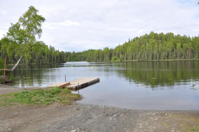 5750 W View Circle, Big Lake, AK 99652 (MLS #19-5456) :: RMG Real Estate Network | Keller Williams Realty Alaska Group