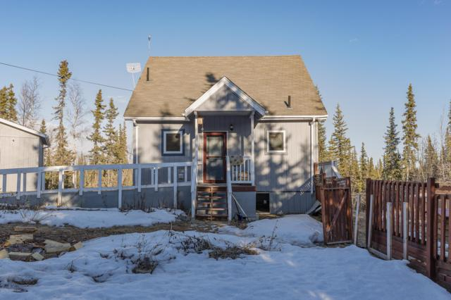 3001 Little Dome Court, Fairbanks, AK 99709 (MLS #19-5603) :: Roy Briley Real Estate Group