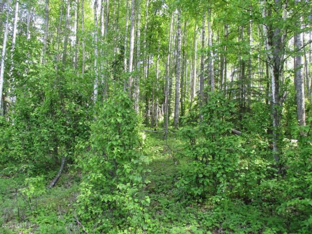 15373 W Necrason Drive, Big Lake, AK 99652 (MLS #19-5657) :: RMG Real Estate Network | Keller Williams Realty Alaska Group