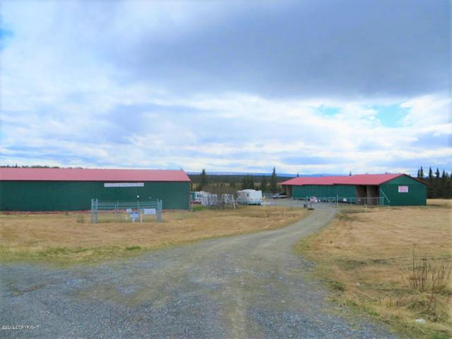 56407 Blueberry Avenue, Clam Gulch, AK 99568 (MLS #19-5708) :: Wolf Real Estate Professionals