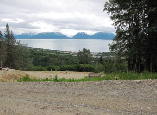 5760 Scenic Place, Homer, AK 99603 (MLS #19-5748) :: Core Real Estate Group
