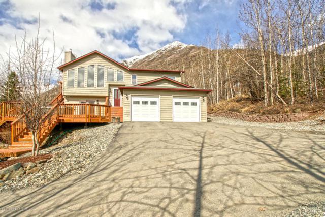 27427 Paramount Drive, Eagle River, AK 99577 (MLS #19-5782) :: Roy Briley Real Estate Group