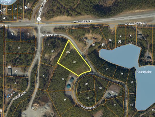 B2-3 S Becky Lane, Big Lake, AK 99652 (MLS #19-5787) :: RMG Real Estate Network | Keller Williams Realty Alaska Group