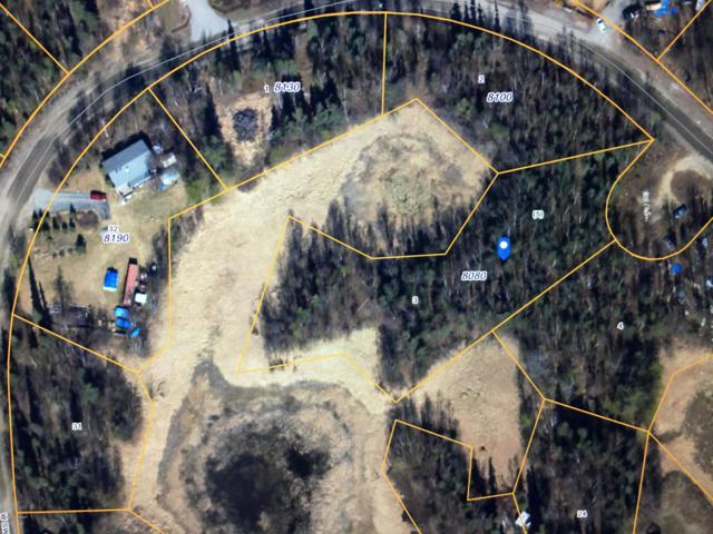 8080 W Swan Drive, Wasilla, AK 99623 (MLS #19-5829) :: RMG Real Estate Network | Keller Williams Realty Alaska Group