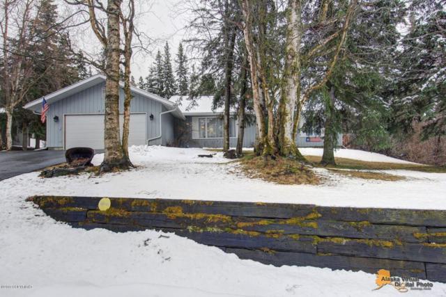 4740 Talus Drive, Anchorage, AK 99516 (MLS #19-5838) :: Team Dimmick