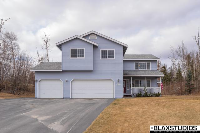 412 S Sarah Circle, Palmer, AK 99645 (MLS #19-5862) :: Roy Briley Real Estate Group
