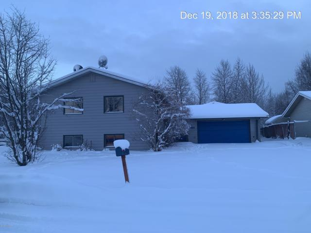 2140 Tasha Drive, Anchorage, AK 99502 (MLS #19-592) :: RMG Real Estate Network | Keller Williams Realty Alaska Group
