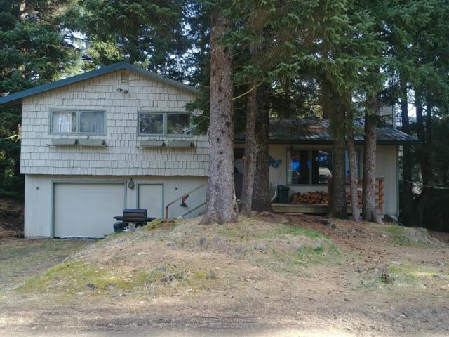 330 Eagle Run Loop, Seldovia, AK 99663 (MLS #19-5925) :: Roy Briley Real Estate Group
