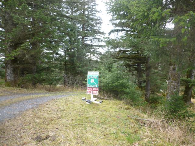 1097 Sawmill Circle, Kodiak, AK 99615 (MLS #19-5930) :: Team Dimmick
