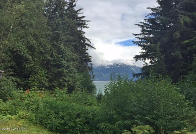 Lot 4 First Avenue, Haines, AK 99827 (MLS #19-5936) :: Team Dimmick