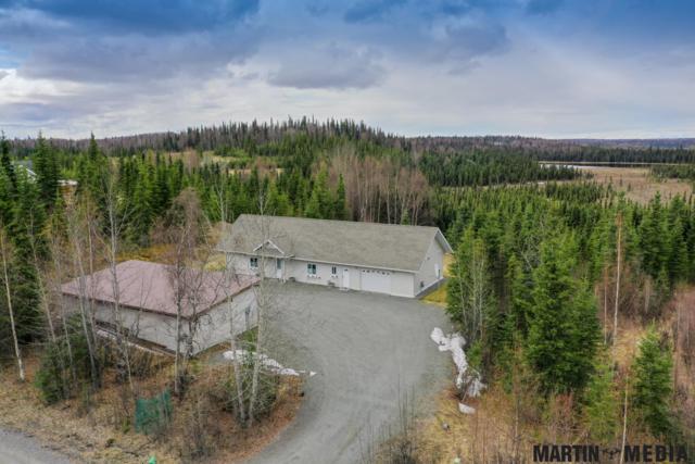 36765 Jim Dahler Road, Soldotna, AK 99669 (MLS #19-5949) :: RMG Real Estate Network | Keller Williams Realty Alaska Group