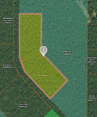 14733 E Achilles Loop, Talkeetna, AK 99676 (MLS #19-5974) :: Roy Briley Real Estate Group