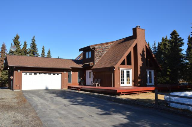 37153 Minke Drive, Kenai, AK 99611 (MLS #19-6013) :: RMG Real Estate Network | Keller Williams Realty Alaska Group