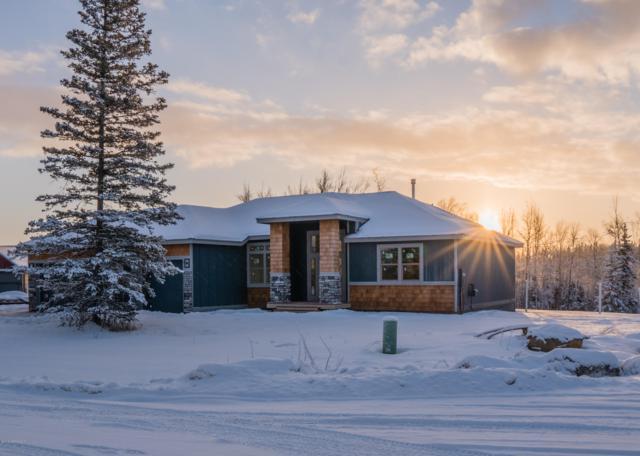 2530 W Angela Drive, Wasilla, AK 99623 (MLS #19-612) :: RMG Real Estate Network   Keller Williams Realty Alaska Group