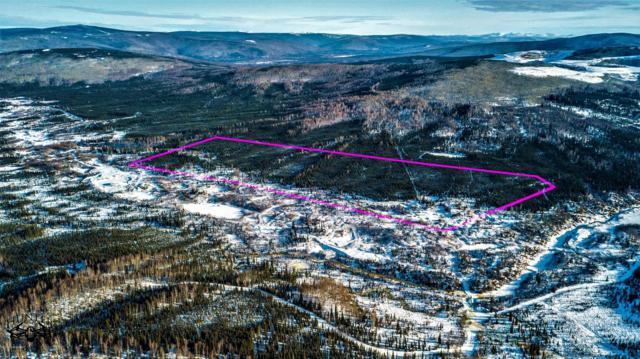 3800 Elliott Highway, Fairbanks, AK 99712 (MLS #19-6135) :: Roy Briley Real Estate Group