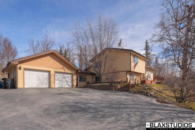 10005 E Strand Drive, Palmer, AK 99645 (MLS #19-6178) :: Synergy Home Team