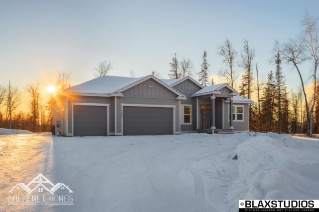 9956 W Clay-Chapman Road, Wasilla, AK 99623 (MLS #19-6181) :: The Adrian Jaime Group | Keller Williams Realty Alaska