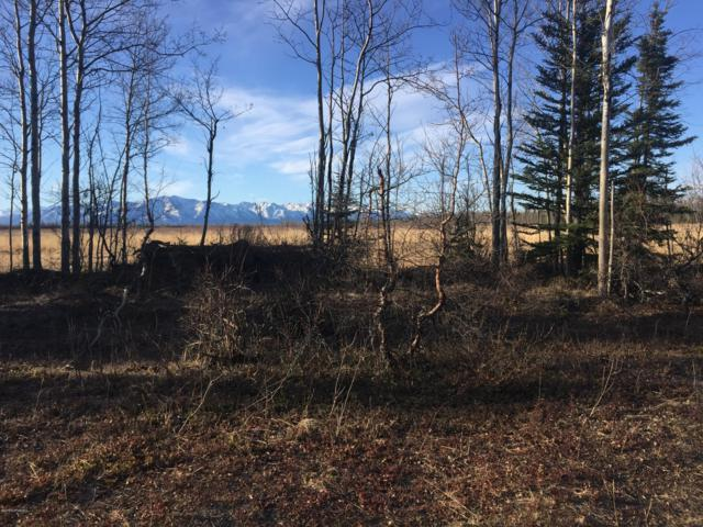 Q and R Ptarmigan Road, Remote, AK 99000 (MLS #19-6186) :: The Adrian Jaime Group | Keller Williams Realty Alaska