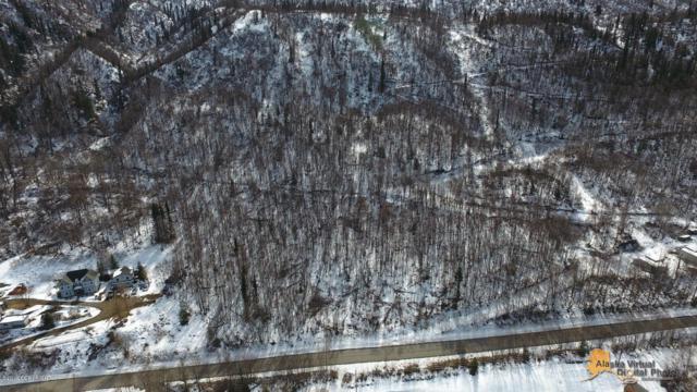 19190 Stonehill Drive, Eagle River, AK 99577 (MLS #19-6190) :: Roy Briley Real Estate Group