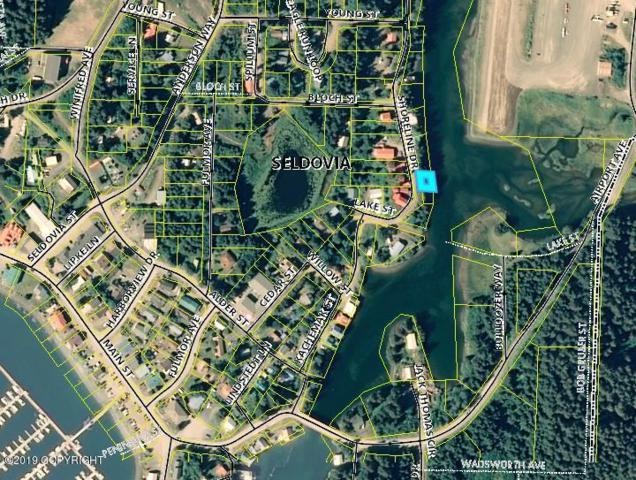 Tr N Shoreline Drive, Seldovia, AK 99663 (MLS #19-6225) :: Roy Briley Real Estate Group