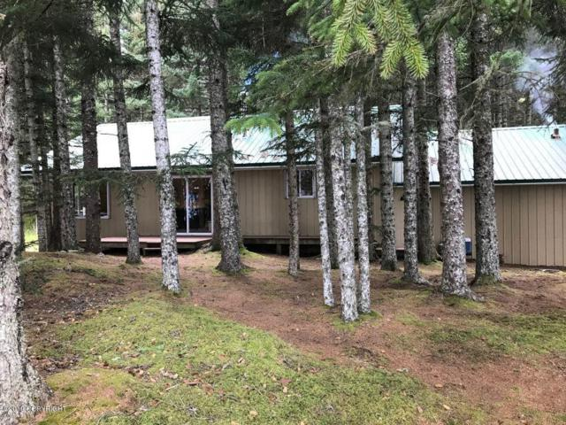 000 Raspberry Island, Remote, AK 99615 (MLS #19-6274) :: Roy Briley Real Estate Group