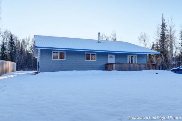 5870 W Phenix Avenue, Wasilla, AK 99623 (MLS #19-636) :: Alaska Realty Experts