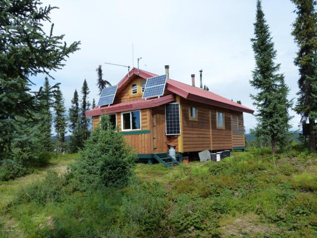 71588 S Lake Trail, Remote, AK 99000 (MLS #19-6446) :: Core Real Estate Group
